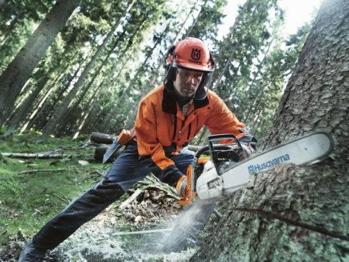 Как правильно спилить дерево бензопилой – все по шагам + видео