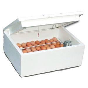 Инкубатор своими руками в домашних условиях: чертежи с размерами самодельных инкубаторов, изготовление из пенопласта, видео