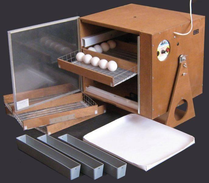 Как в домашних условиях сделать инкубатор своими руками?