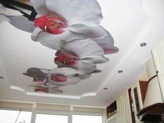 Натяжные потолки в прихожей: 100 фото элегантных сочетаний и красивых идей применения
