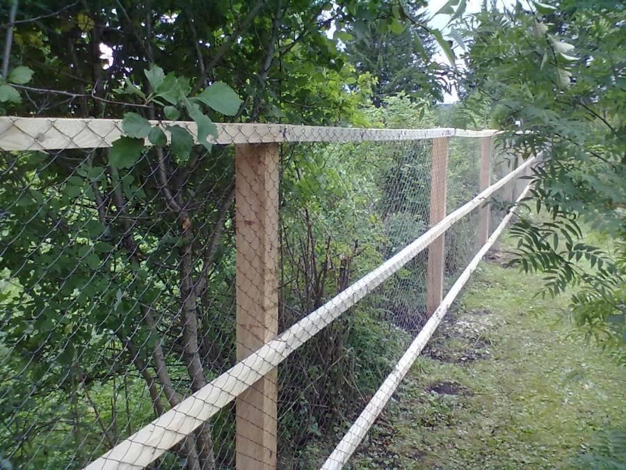 Забор из сетки — пошаговая инструкция как построить забор. способы изготовления и установка саржевой сетки и сетки рабицы (85 фото)