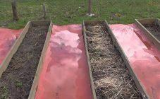 Как избавиться от травы между тротуарной плиткой? народные средства и химикаты. как убрать сорняки между швами? что делать, чтобы не росла?