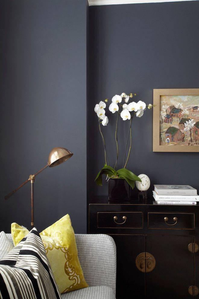Моющаяся краска для стен кухни: разновидности, советы по выбору, фото примеры