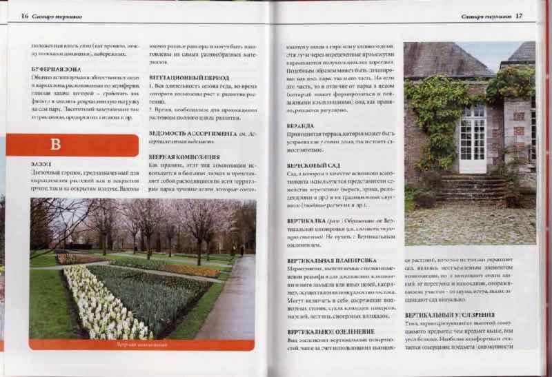 Идеи для дачи: проекты ландшафтного дизайна и правила оформления своими руками (165 фото)