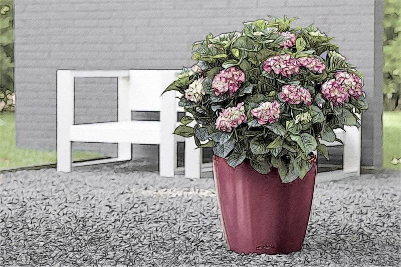 Уличные вазоны для цветов из разных материалов своими руками