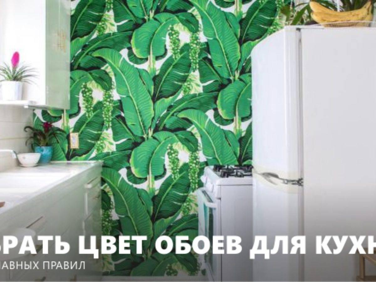 Салатовые обои: фото, сочетание цветов, особенности подбора штор