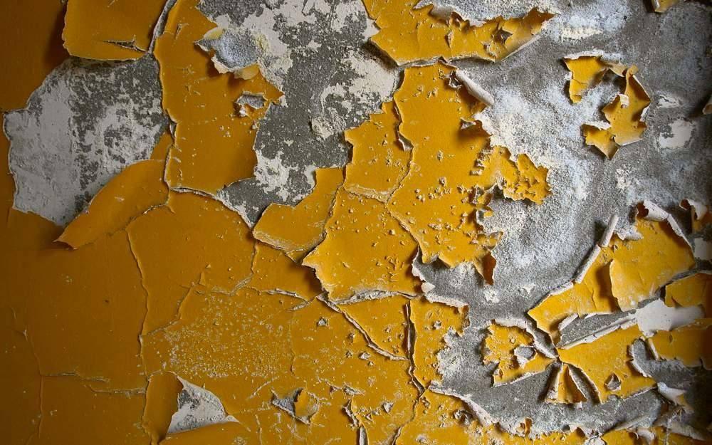 Поклейка обоев поверх масляной краски: можно ли?