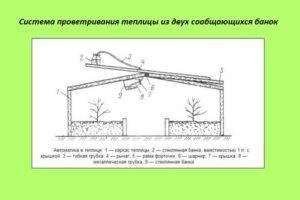 Как сделать форточку для теплицы из поликарбоната своими руками? а также другие варианты размещения форточки