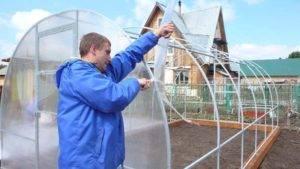 Как построить теплицу из рам под пленку своими руками: деревянные и каркасные конструкции