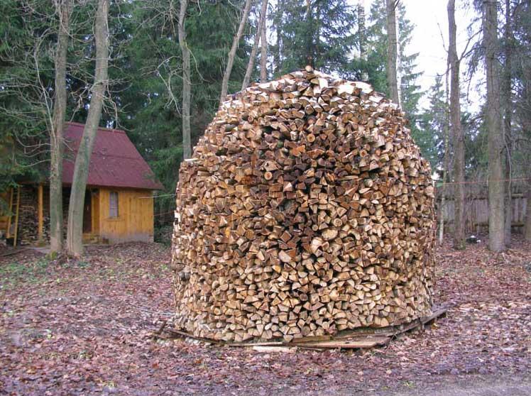 Навесы из дерева к дому (35 фото): виды деревянных навесов. как построить их своими руками быстро и дешево без фундамента по чертежам?