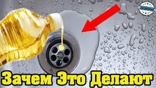 Подсолнечное масло в раковину – кто придумал заливать и для чего это нужно