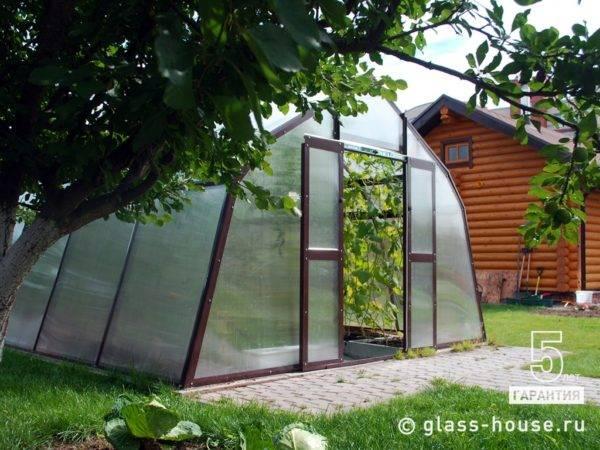 Теплицы glass house: особенности и преимущества конструкций - oteplicax