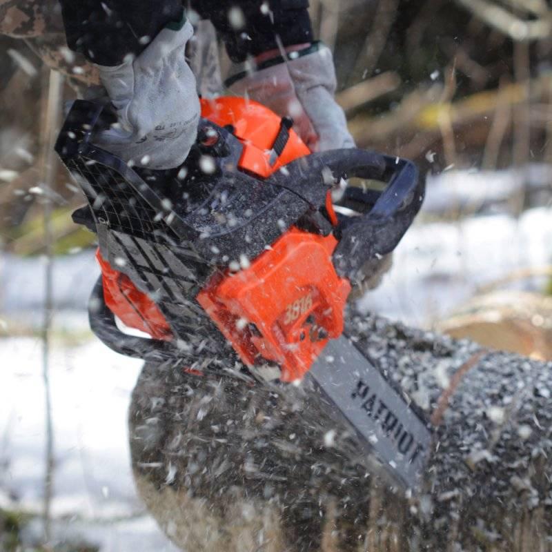 Как правильно и безопасно спилить дерево своими руками: способы, полезные рекомендации, меры предосторожности