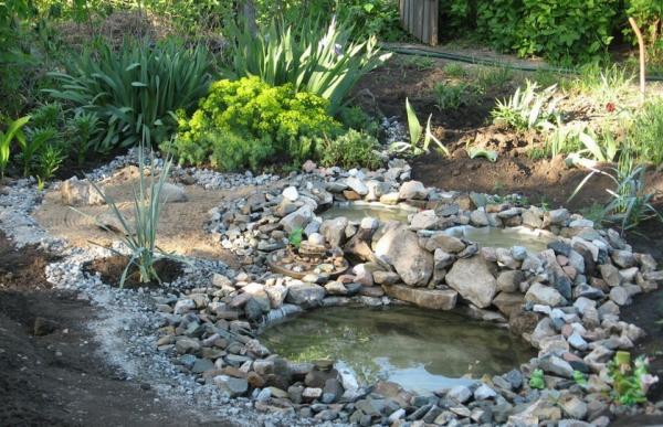 Пруд на даче: пошаговая инструкция по выбору формы и оформления водоема (170 фото)