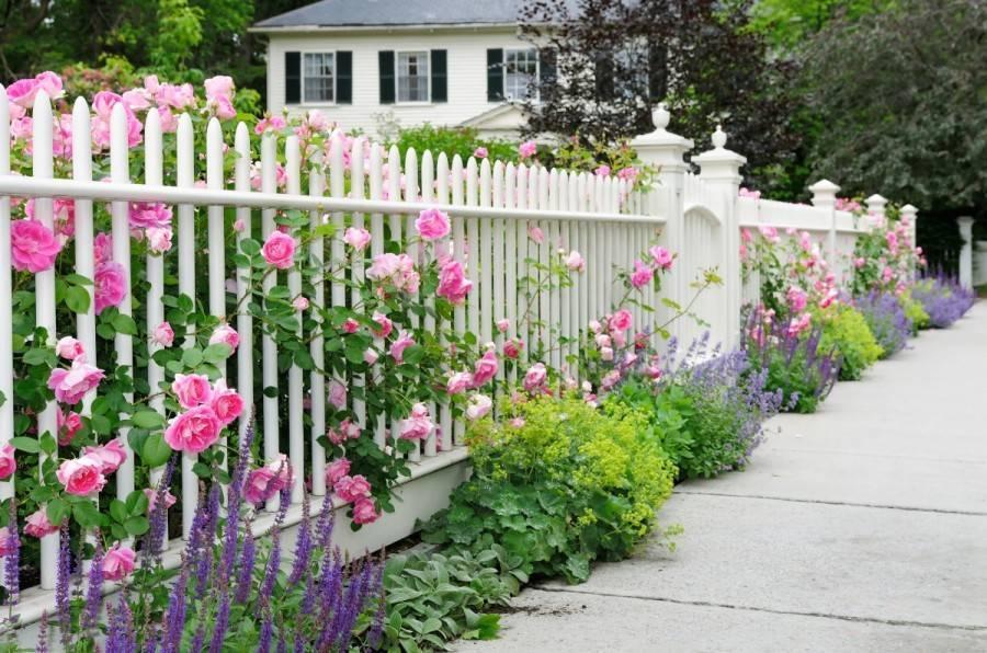 Как украсить дачный участок своими руками (41 фото) | дом мечты