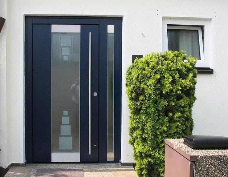 Алюминиевые входные двери: разновидности, комплектующие, особенности установки и эксплуатации