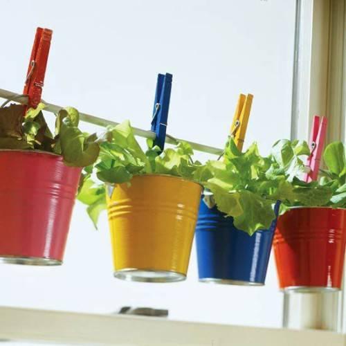 Огород на подоконнике: как вырастить, что посадить