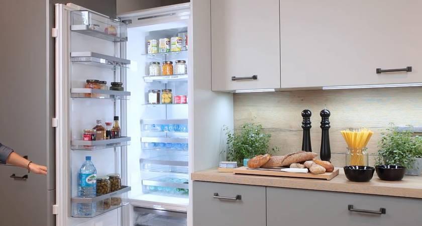 Лучшие недорогие холодильники - рейтинг 2020 (топ 10)