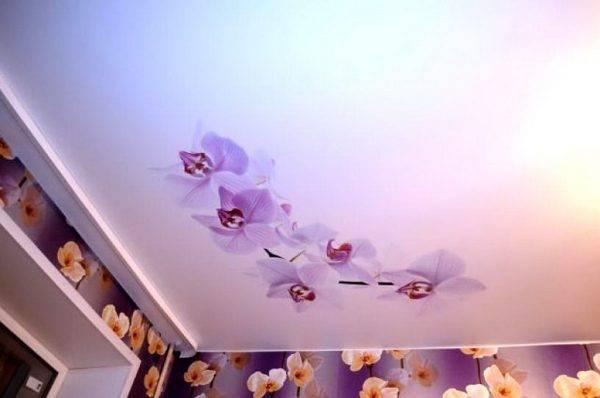 Двухуровневые натяжные потолки: 95 фото, лучшие идеи и дизайнерские решения