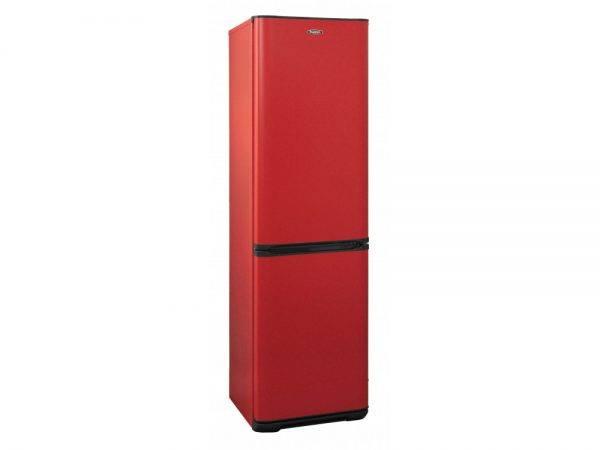 Топ-20 лучших холодильников бирюса