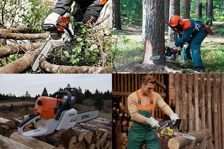 Как правильно валить деревья бензопилой у дома и на даче + мастер-класс