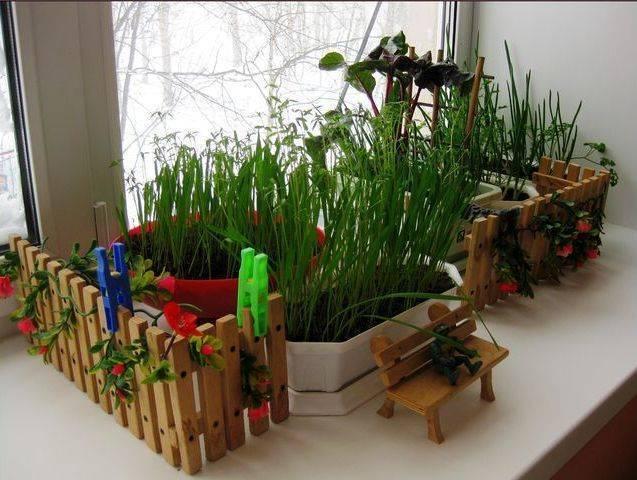Правила и рекомендация выращивания овощей и зелени в цветочных горшках