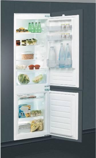 Лучшие холодильники бирюса, топ-20 рейтинг хороших моделей 2020
