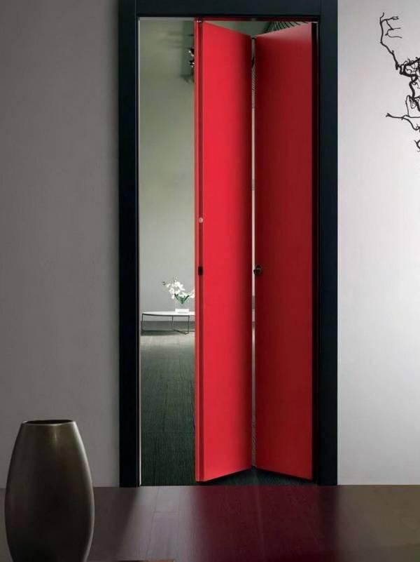 Межкомнатные двери-книжка (73 фото): стеклянные модели и из дерева со складным и раздвижным механизмом, складывающиеся варианты, отзывы