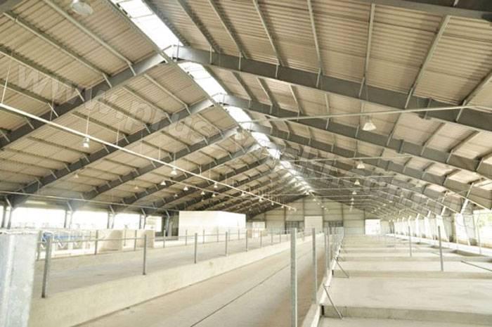 Строительство коровника своими руками: проект мини-фермы для рогатого скота