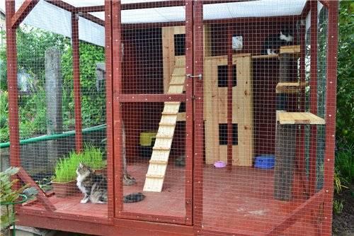 Домик для кошки своими руками: 11 простых идей (фото)