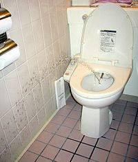 Лаконичный интерьер ванной комнаты в японском стиле