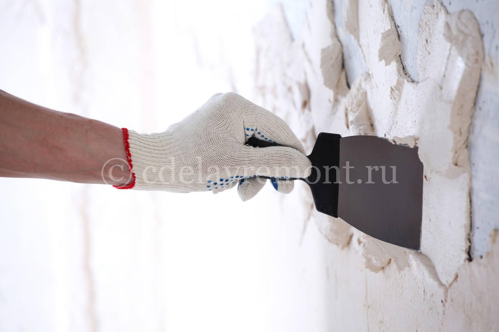 Штукатурка стен гипсовой штукатуркой: как разводить своими руками, как развести цементную смесь для оштукатуривания