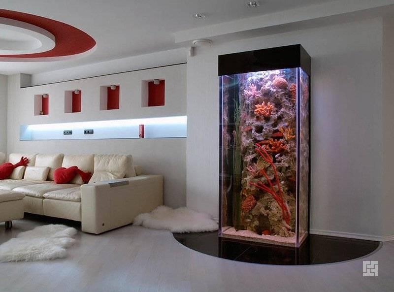 Сухой аквариум в интерьере - типы, фото примеры, декорации
