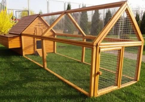 Как построить курятник на даче своими руками на летний период из подручных материалов?