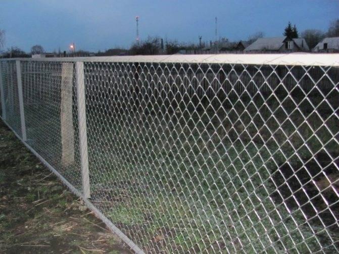 Чем закрыть забор из сетки рабицы - фото примеров
