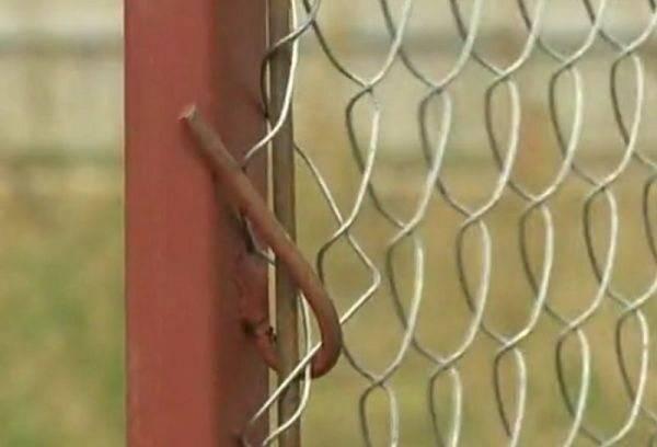 Как сделать забор из сетки рабицы своими руками