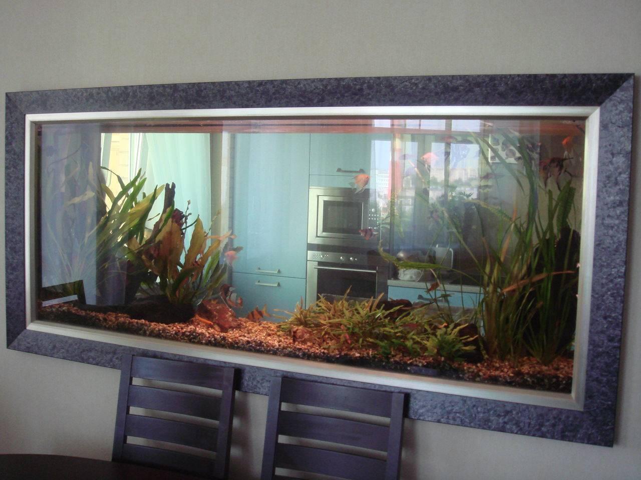 Сухой аквариум в интерьере: типы, варианты декораций, фото