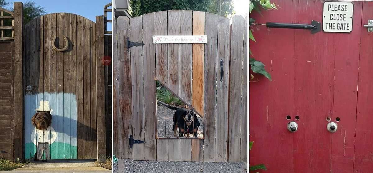 Калитка и ворота из профлиста своими руками: устройство и пошаговая инструкция