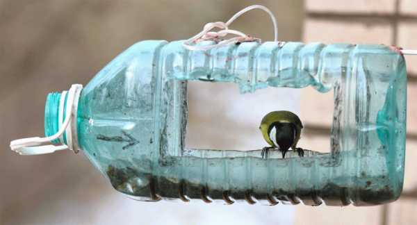 Kак сделать кормушку для птиц своими руками: пошаговые мастер-классы
