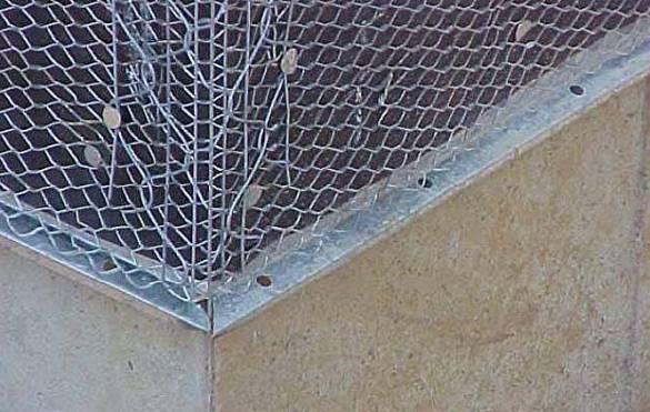 Как избавиться от мышей на чердаке?