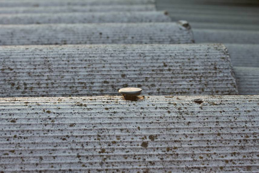 Цветной шифер и другие виды шиферного листа: металлический, безасбестовый, алюминиевый, римская черепица, железный