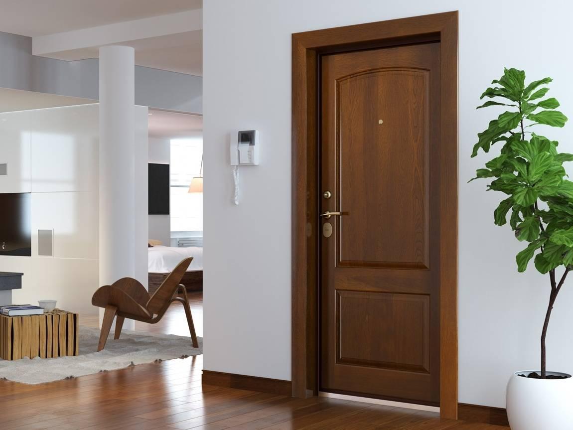 Уникальные характеристики дверей капель