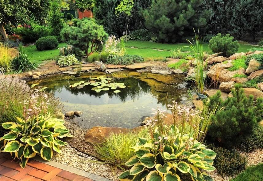 Как установить и оформить пластиковый пруд в саду. выбор чаши, декор и озеленение, личный опыт. фото — ботаничка.ru