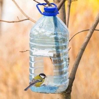 Кормушка из пластиковой бутылки: лучшие идеи и варианты по созданию и размещению