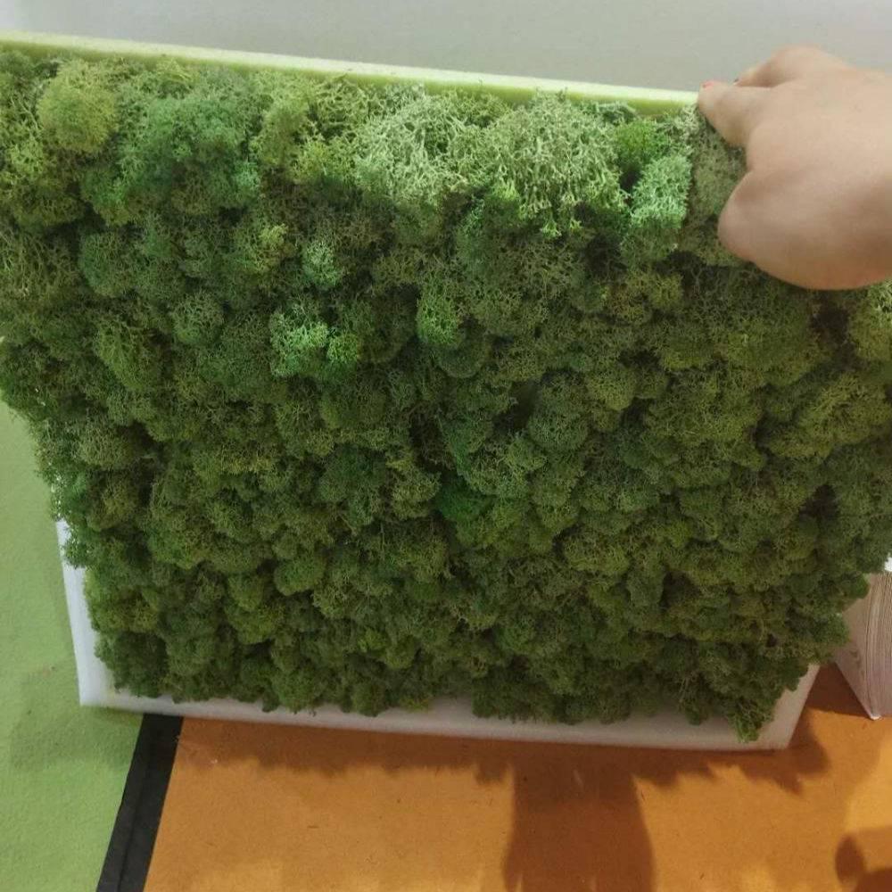 Видео картина панно рисунок мастер-класс ассамбляж видео мк - картина из живого мха своими руками дерево краска материал природный