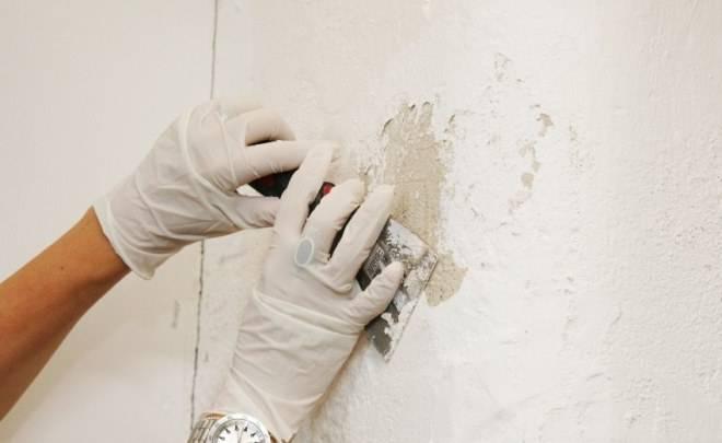 Как клеить обои на крашеные стены: освещаем подробно