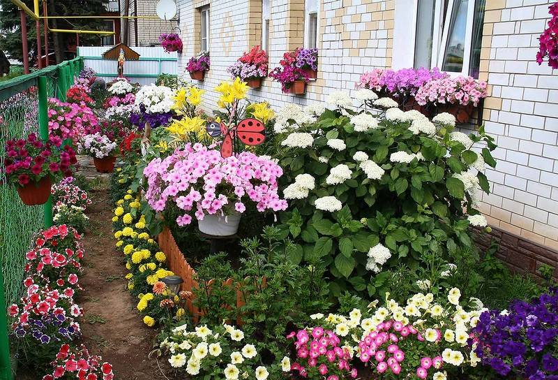 Оформление палисадника перед домом: выбор стиля оформления ландшафта, цветов, ограждения и аксессуаров