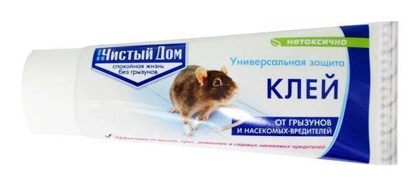 Борьба с мышами в частном доме