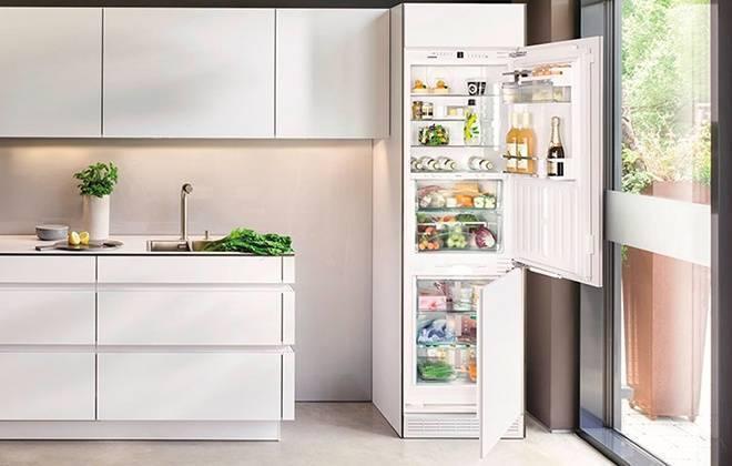 Рейтинг встраиваемых холодильников 2020 года, их плюсы и минусы, как выбрать