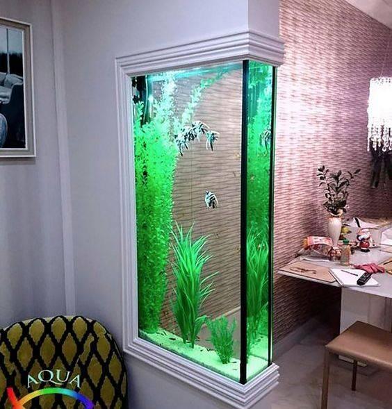 Аквариумы в интерьере квартиры: варианты дизайна в стене между комнатами и др.